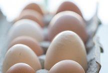 Egg Recipes / The best egg recipes!