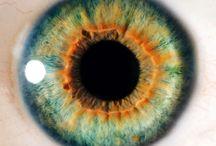 EMDR / Eye Movement Desensitization & Reprocessing - a way to get beyond our small setbacks or major traumas