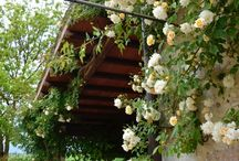 Outside / The #gardens outside rooms and apartments