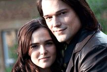 Vampire Academy / rose and dimitri
