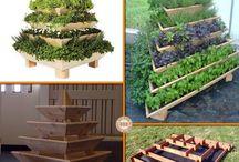 Flower Beds, gardening tips. Improving your backyard.