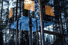 Cabins/ Tree Houses