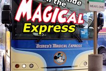 Disney World - Transportation / Getting to and from Disney World and how to get around while you're there