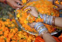 India / by Meghan Mackintosh
