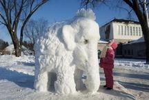 Hoe krijg je zoon olifant gemaakt en ook zo groot..