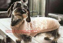 Одежда для животных / pet clothes