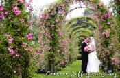 Elizabeth Park / Elizabeth Park is the perfect setting for wedding ceremonies and pictures!