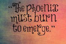 Phoenix girls