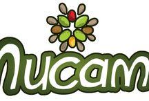 Nutrición / Alimentos naturales nutritivos y funcionales