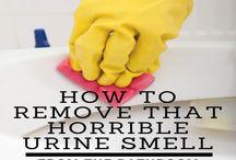 Smelly Bathroom Tips