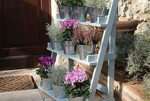 Flower shelves