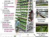 Vertical Farming / 도시에서 농장만들어보기..