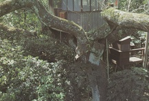 TREE HOUSES///