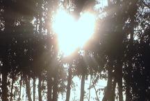 Sunshine! <3