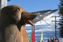 New Hampshire's best skiing / Where to ski & ride in New Hampshire's White Mountains. Best NH ski resorts for families...