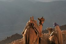 Mount Sinai / by Isabel Melcher