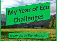 My Year of Eco Challenges