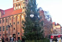 Toruń 1 / moje miasto Toruń