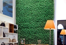 Green Your Walls