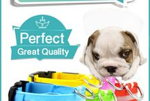 Pet products / Pet products