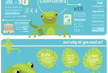 Salamandra Design / Examples of what we do!