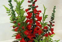 Sugarcraft Flowers Cake Exhibitions