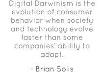Marketing Quotes / by Alin Vlad