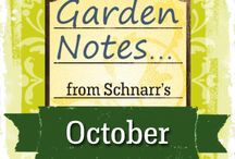 October Garden Notes / Tasks that are good to do in the garden in October.