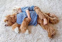 Ninos y mascota