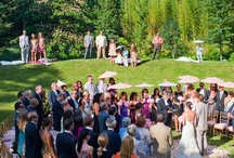 Weddings and Showers / Ideas for that day when I find the right man! / by Brenna Archibald