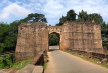 Enjoy Tremendous Experiences of Travel in Odisha with Heritage Tours