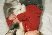 animals&kids