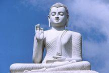 Buddhism / by M K