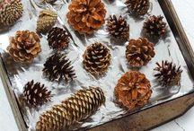 pines mamá