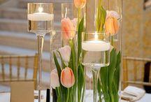 tulipany sala Kościół