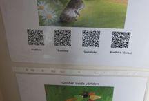 QR koder i förskolan