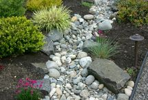 Water Wise Garden Ideas / by Eden Condensed