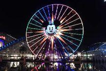 Disneyland Trips / by KaityDid