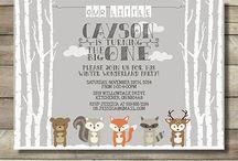 Asha's Arctic fox party
