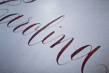 Calligraphy and Handwritting / by Virginia Polo