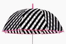 Şemsiye*Umbrella