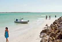Discover Florida / by Singer Island Lifestyles