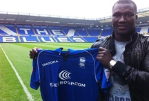 Former player - Papa Bouba Diop