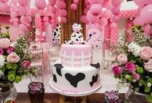 festa aniversário