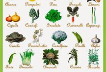Calendar of vegetables