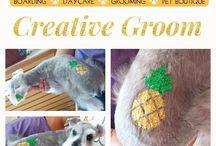 Creative Grooming