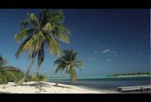 Orbitz Originals: Cayman Islands