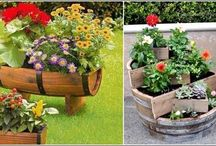 Planters & Flowers