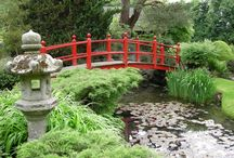 Japanese Garden Dreams / There is just something over an Japanese Garden. If it's really great then it's both calming and wild at the same time. They are just beautiful.