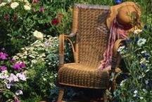 Home Garden Ideas / by Jane